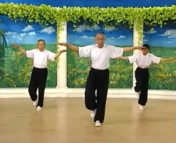 华佗五禽戏视频教学1-2全套